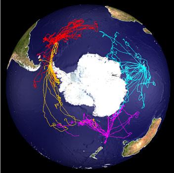 Comment les vents de l'océan austral chamboulent les échanges air-mer