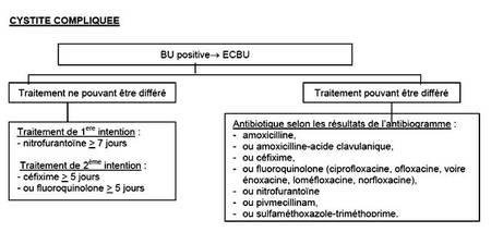 Recommandations de l'ANSM (anciennement Afssaps)pour le traitement de la cystite aiguë compliquée. © DR