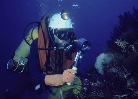 Comment devenir plongeur soigneur animalier ?  Education d'animaux