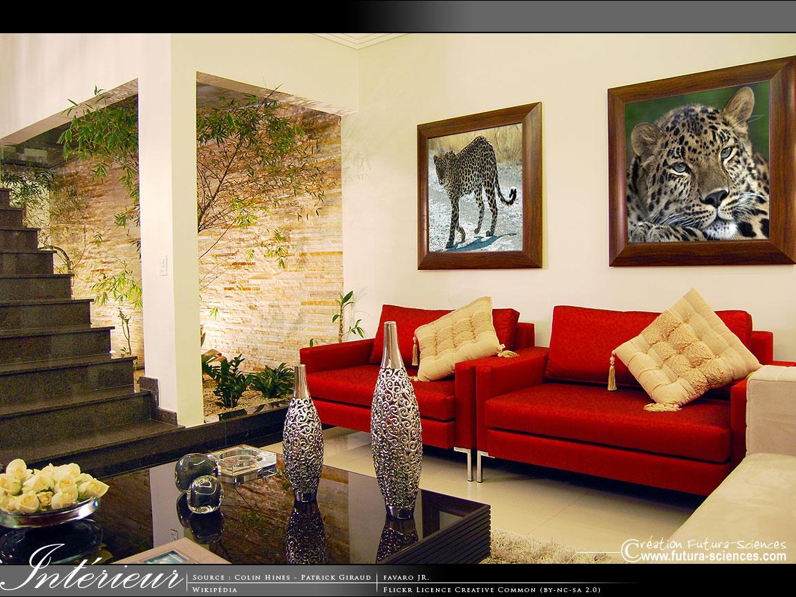 اروع المنازل Interieur-050710b-1152